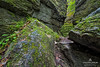 Standing Rock Side Trail, Bruce Trail, along the Niagara Escarpment an UNESCO World Biosphere, Nottawasaga Lookout Provincial Park, Ontario