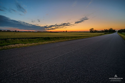 Sunset on rural road beside winter wheat crop, Ontario, Canada