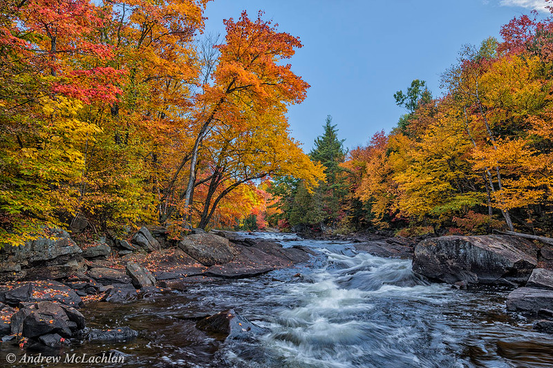 Autumn Colour on the Oxtongue River