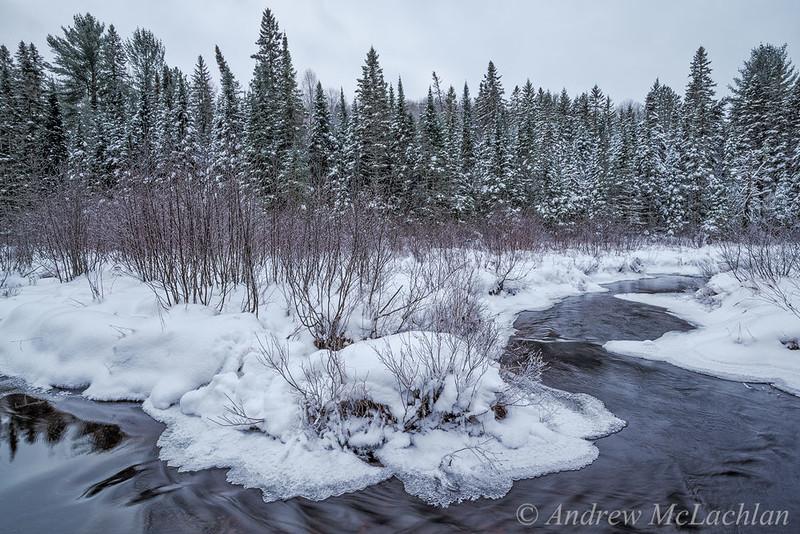 Costello Creek in Winter in Algonquin Provincial Park