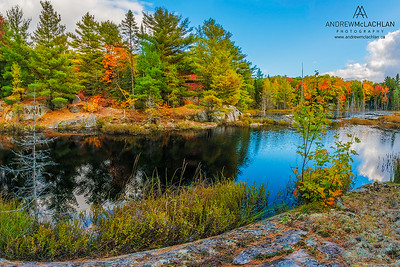 Wetland in Autumn, Muskoka, Ontario, Canada
