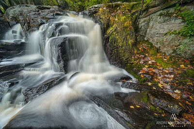 Woodland Waterfall on Potts Creek, Bracebridge, Ontario, Canasa