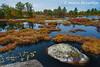 Highland Pond in the Torrance Barrens Dark Sky Reserve, Muskoka, Ontario, Canada