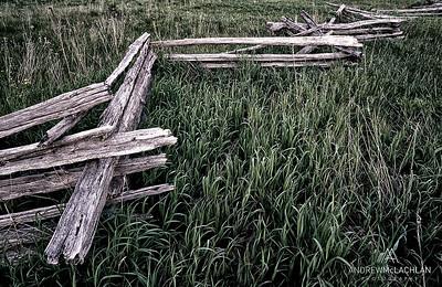 Cedar Rail Fence, Simcoe County, Ontario, Canada