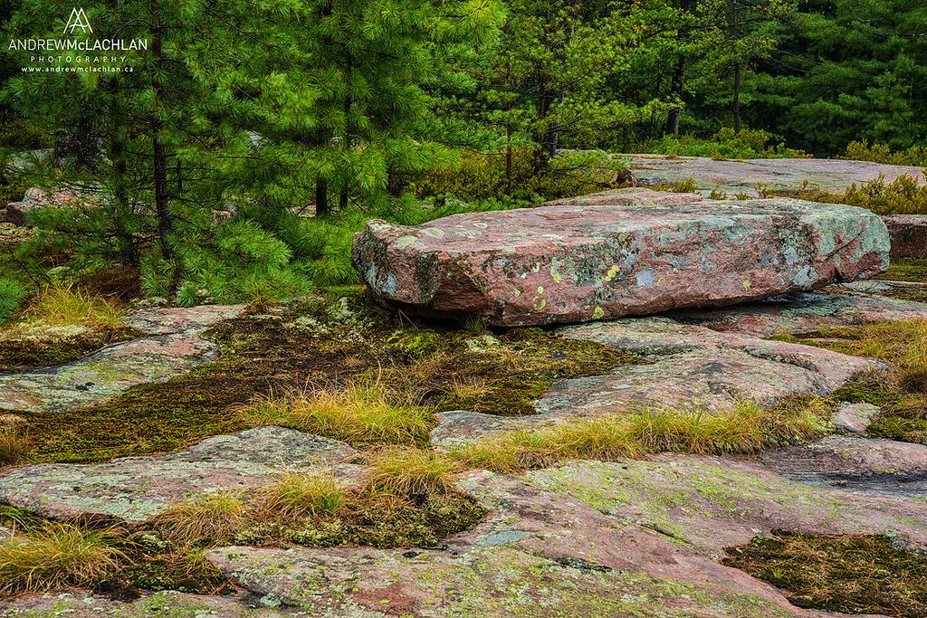 Killbear Provincial Park, Ontario, Canada
