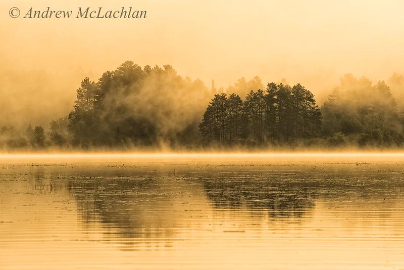 Misty Morning on Lake Travers