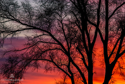Sunrise, Humber Bay Park, Toronto, Ontario, Canada