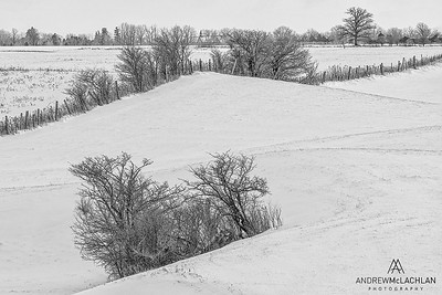 Winter Farm Scenic, Strathroy, Ontario, Canada