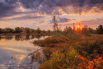 Sunrise at Highland Pond in the Torrance Barrens, Ontario, Canada