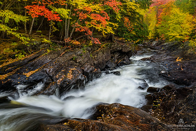 Hogs Trough, Oxtongue River, Muskoka, Ontario