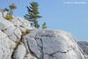 White Quartzite of the La Cloche Mountain Range