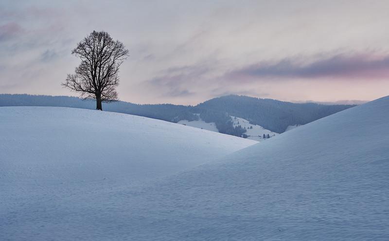 Hirzel Hills