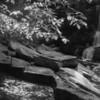 Cowsheds Falls - B&W