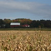 Barn with a cornfield