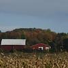 Barn and A Cornfield