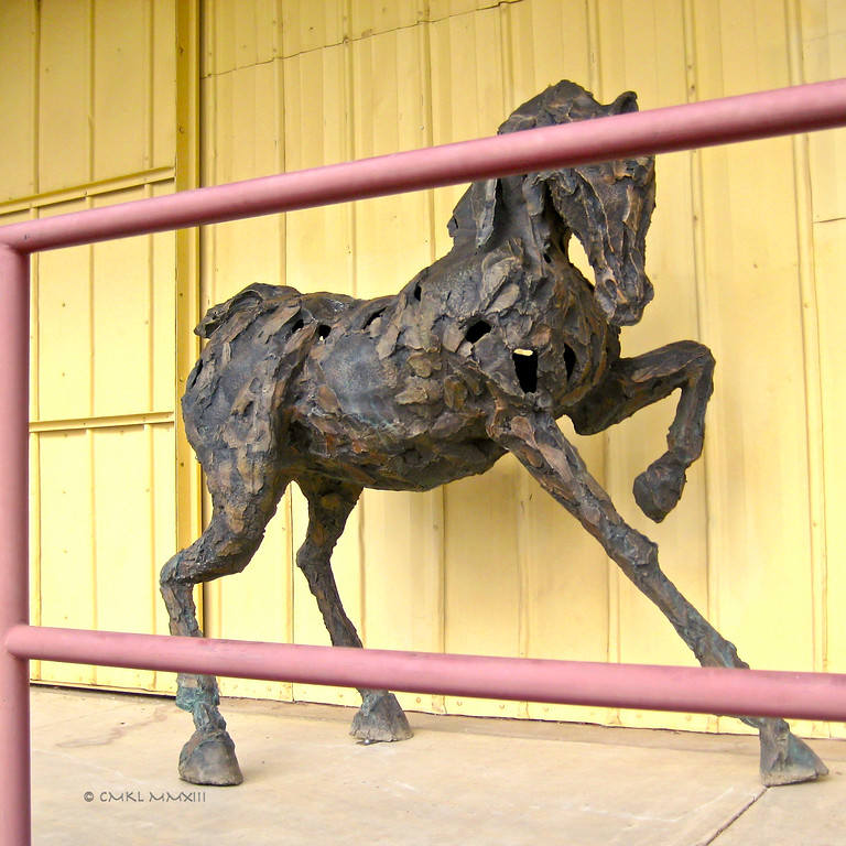 Siri Hollander Horse