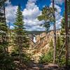 Yellowstone's Lower Falls