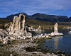 Eastern Sierra, Tufa at Mono Lake after Sunrise