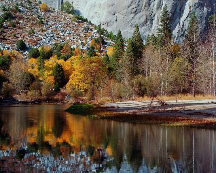 Fall Colors in Yosemite, along the Merced