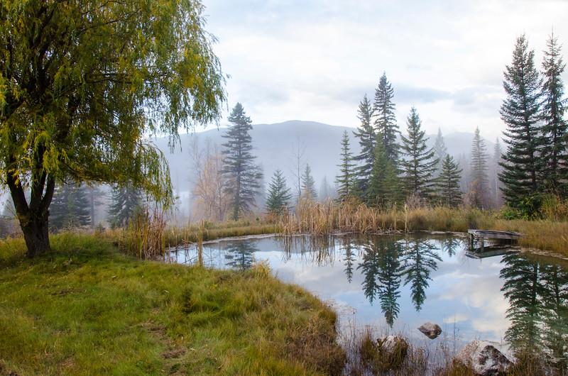 Brisco pond.jpg