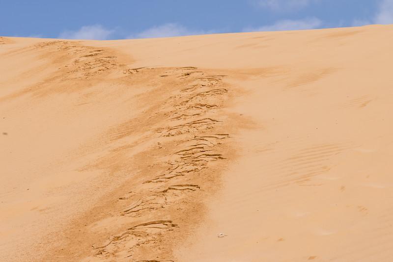 Kasuy Sands