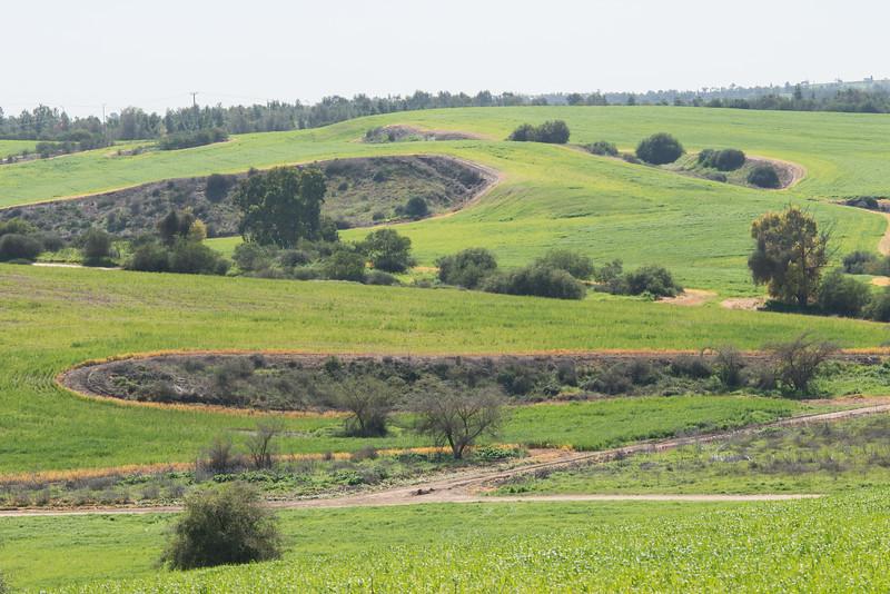Bitronot Ruchama