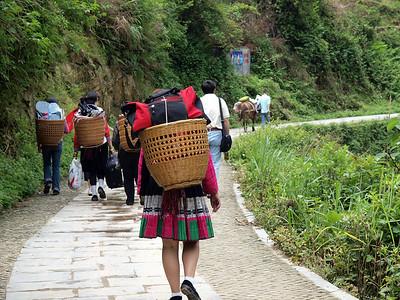 龙脊梯田 Longji Rice field in Guangxi