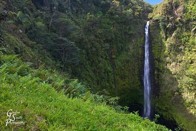 Akaka Falls Classic View
