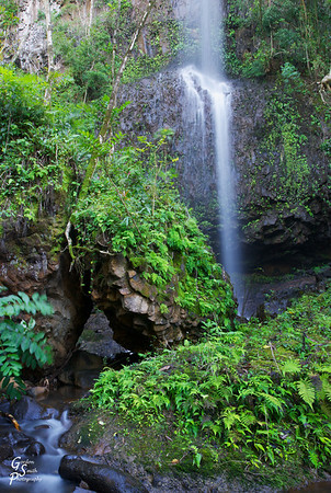 Unnamed Falls of Kauai.   This one is difficult to walk to because the road hugs the trail so closely that you don't want to get run over by the passing automobiles!  But I did find it and took this photo.