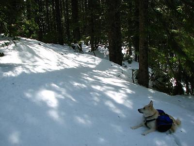 (04-27-08) East Zigzag Mountain