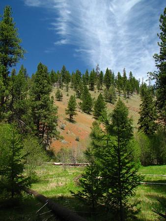 (05-2325-09) Mill Creek Wilderness