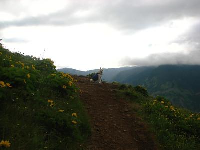 (05-29-11) Dog Mountain