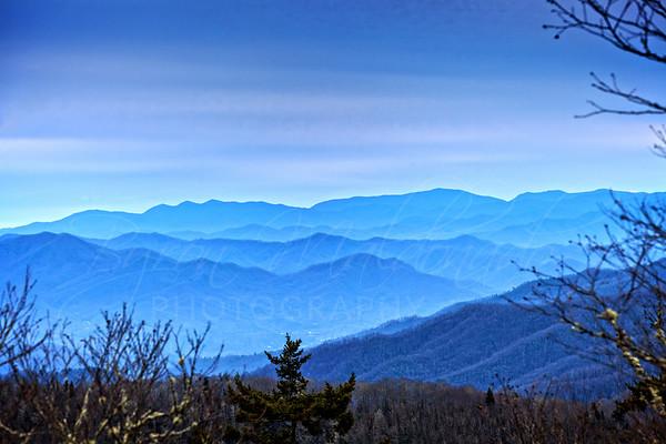 Appalachian Trail North Carolina