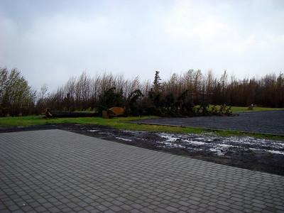 10-10-2008 wind damage