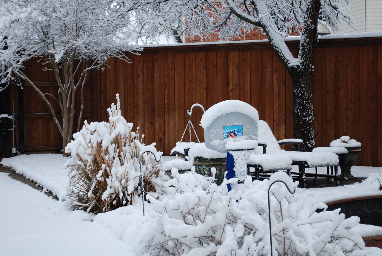"""A little snow in the backyard.  Only measured 8"""" in grass and other surfaces...4-5"""" on the concrete before it started melting.  DFW officially received 12.5""""."""