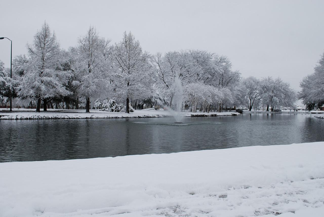 One of the neighborhood ponds.