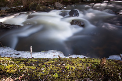 Bicknell Brook