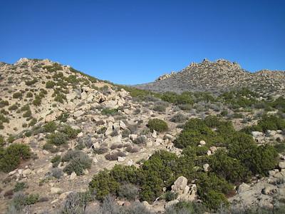 12-14-13 Palm Mesa-Pike-Cody