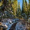 39  G Snowy Trail Up V