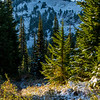38  G Snowy Trail and Tatoosh V