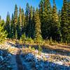 32  G Frosty Trail V