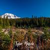 24  G Rainier and Reflection Lakes