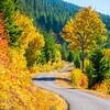 12  G Fall Road