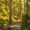 17  G Vista Ridge Trail