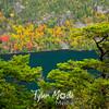 71  G Acadia Color Lake and Trees