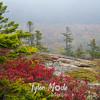 31  G Acadia Color Trail Views
