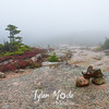 35  G Acadia Color Trail Fog