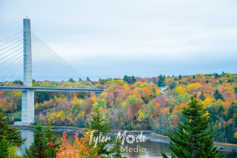 2  G Bridge and Fall Colors