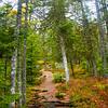 19  G Acadia Color Trail Up V
