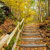 49  G Raymondskill Falls, Pennyslvania Trail V